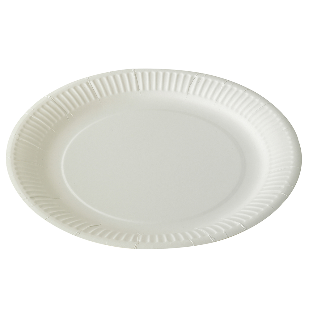 Paper Plate 9 #6920