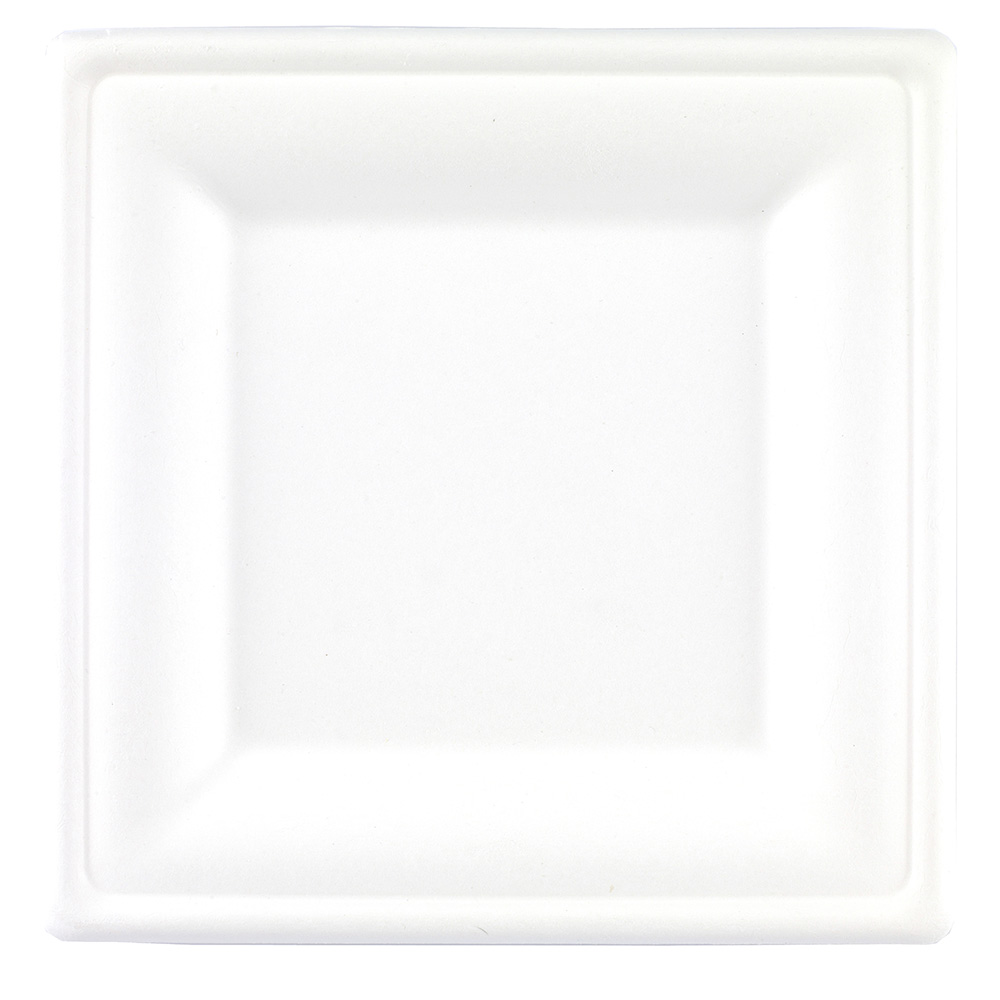 20cm Square Bagasse Plate